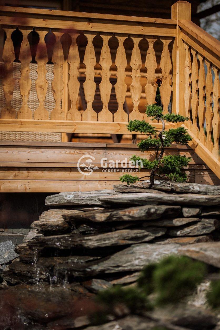 bonsai-w-kaskadzie