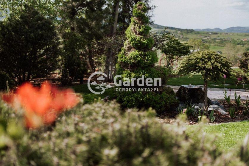 ogród-1521