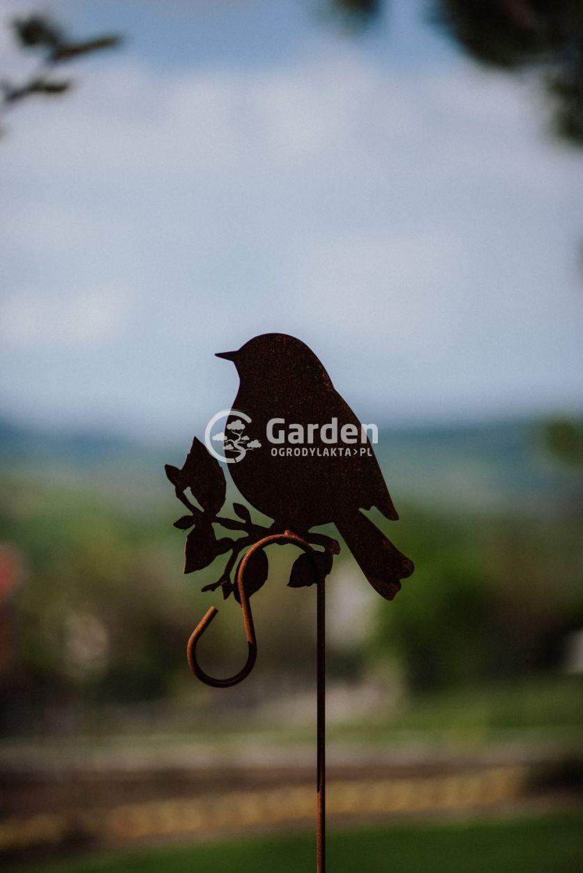 ptak-metalowy